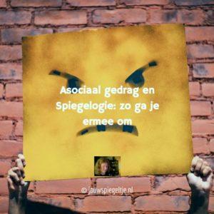 Asociaal gedrag en Spiegelogie, op de foto een doek met een boze smiley, een bakstenen muur op de achtergrond
