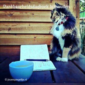 Een dankbaarheidsdagboek bijhouden