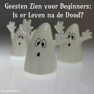 Geesten zien voor beginners, is er leven na de dood? Op de foto zie je 3 grappige, maar wel een beetje bang kijkende spoken