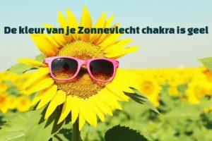 de kleur van je zonnevlecht chakra is geel, op deze foto gesymboliseerd door een grappige zonnebloem met een zonnebril op!