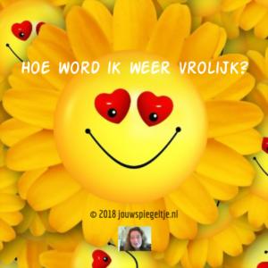 Hoe word ik weer vrolijk. Op de afbeelding zie je een gele bloem in de vorm van een zon met een smiley gezichtje, de oogjes in hartvorm en een brede glimlach.